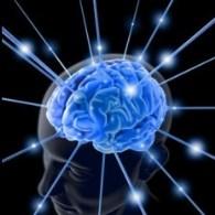 Neuroinmunologia y Neuroinflamación