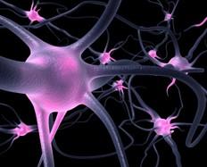 Nuevo Método de Diagnóstico de la Esclerosis Múltiple