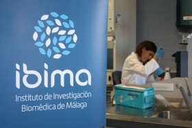 IBIMA_6